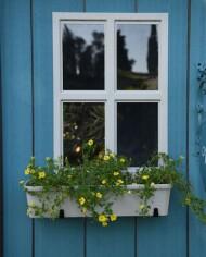 oakland-painted-window